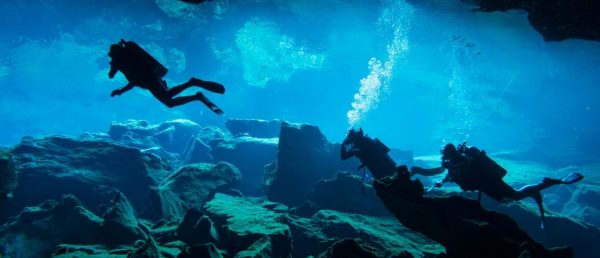 Everything You Should Know About Scuba Diving